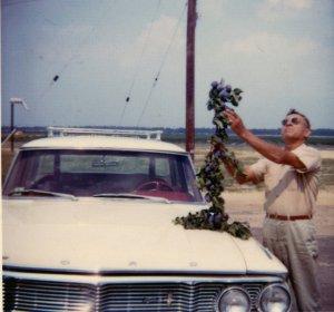 Pop's_berries_Fotor